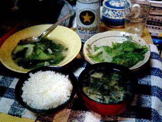 040515_dinner.jpg